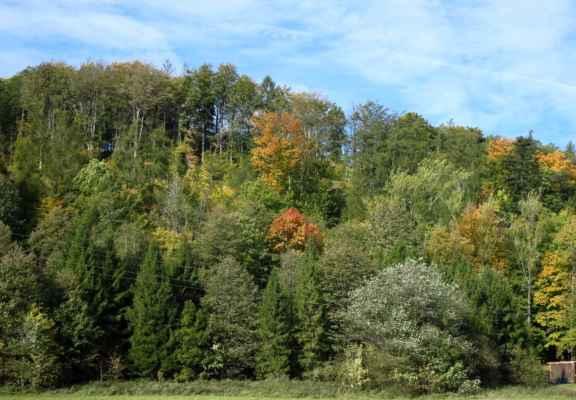 a nádherné barvy podzimu