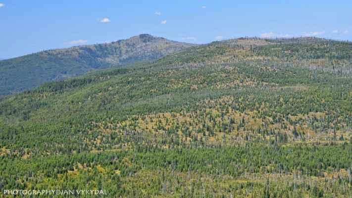 Velký Roklan (1453 m n. m.) - Blatný vrch (1367 m n. m.) - Špičník (1351 m n. m.)