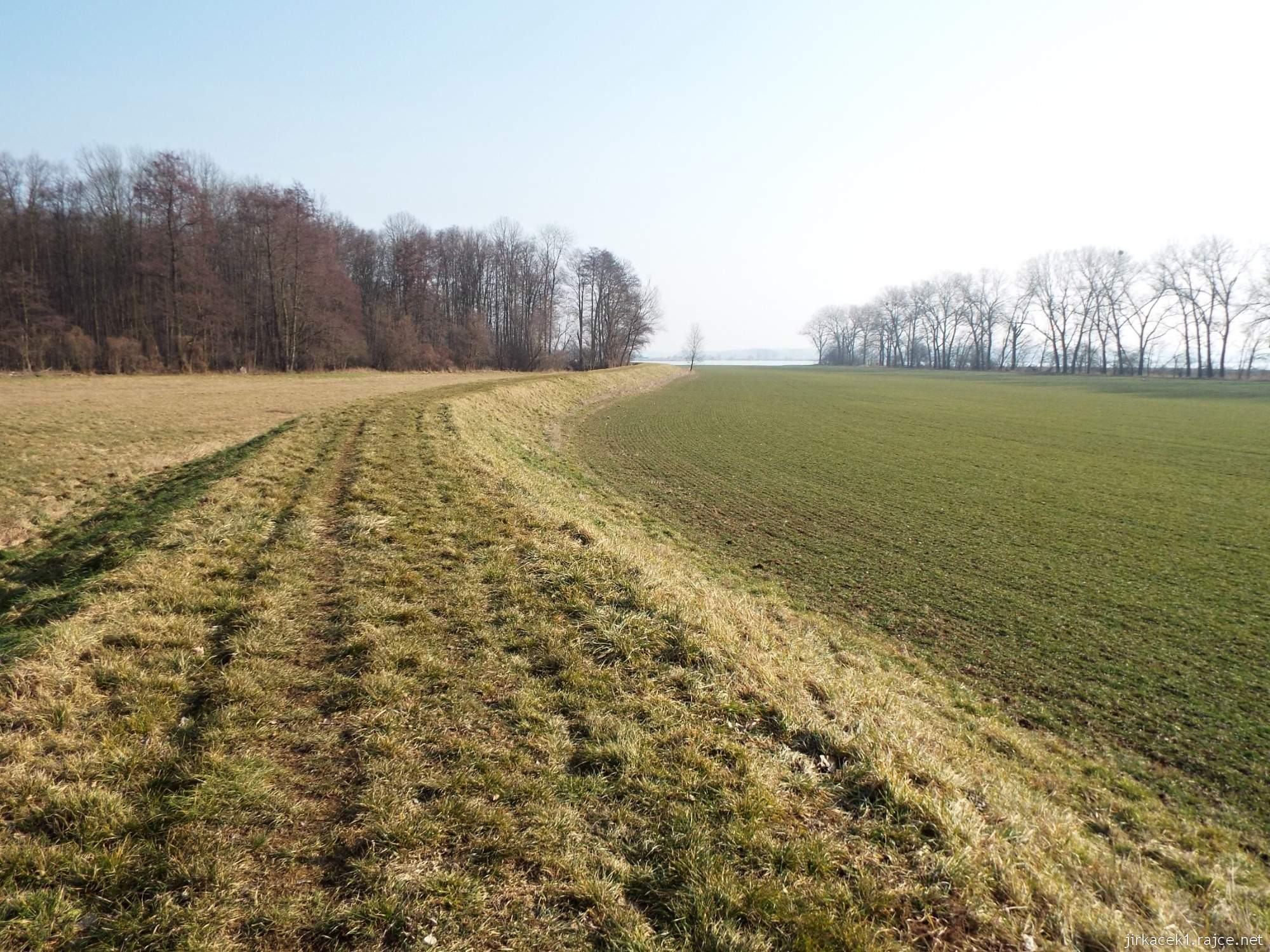 cesta mezi Březové a Lhotou - cesta po hrázi a vpravo mezi stromy potůček Roudník