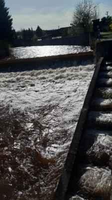 """11.5.2021 - v Mladých Bukách od včera razantně stoupla, teče dokonce i po schodoch, po schodoch  V zimě zde proběhlo video, jak právě tady šly kry a hladina byla """"vzduta ledem"""""""
