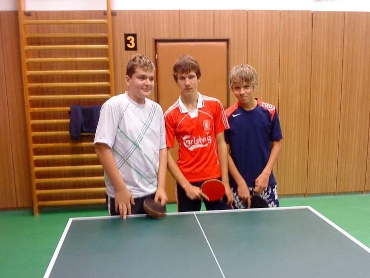 Sportovní liga ve stolním tenisu