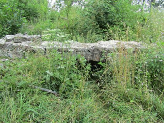 Vítkův hrádek - Pozůstatky středověkého strážního sídla, které bylo zbudováno v první polovině 13. století Vítkem z Hradce. Hrad svou rezidenční funkci pro účely řádu německých rytířů plnil do poloviny 15. století, následně byl opuštěn a začal postupně chátrat. Dodnes se z památkově chráněného objektu dochovaly stopy dvojitého valu v terénu a relikty palácové části.