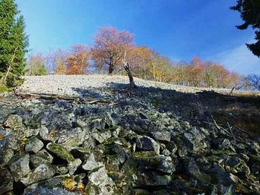 balvanité sutě pokrývají rozsáhlé plochy na jižním úbočí...