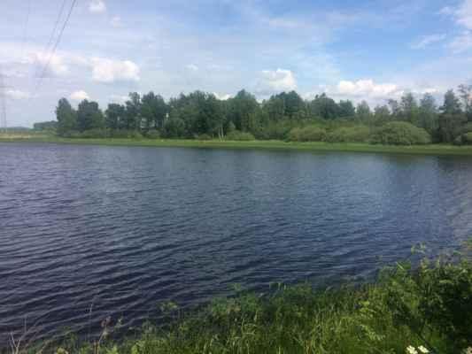 Velký modrý rybník u Německého Chloumku
