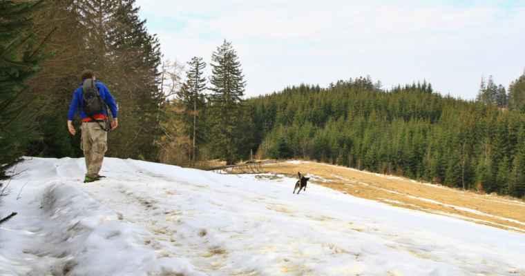 Hroma našla vrhače koulí -sněhových koulí....