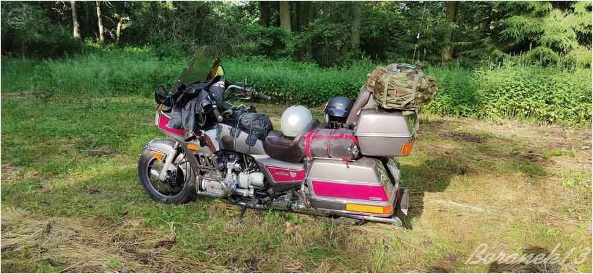 jejich Honda uveze to co můj Bobík a navíc si vezou dvě hledačky pokladů....