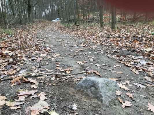 U Trojáku, Hostěnice - Cestou si všímáme původní kamenná označení území a zanášíme je i s označením do mapy.
