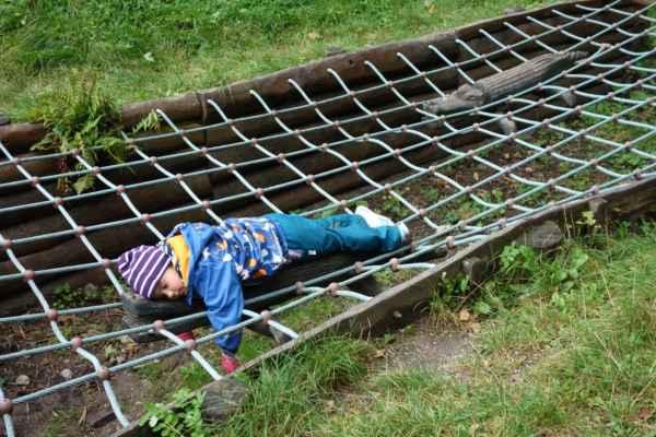 Zvlášť když se na krokodýlech tak pěkně odpočívalo.
